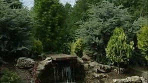 The Dwarf Conifer Garden