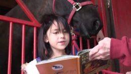 Horse Tales Literacy Program
