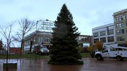 Park Central Square Christmas Tree Installation