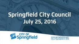 City Council Meeting – July 25, 2016
