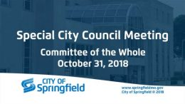 Special City Council Meeting-Committee of the Whole