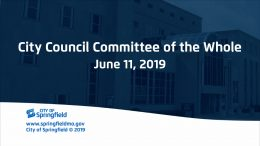 CITY COUNCIL COMMITTEE OF THE WHOLE – June 11, 2019