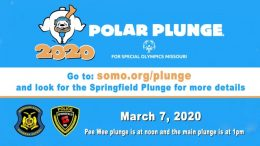 Polar Plunge 2020