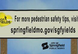 Pedestrian Safety RRFB